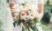 Hochzeitserinnerungen: 14 Premium-Fotobücher im Vergleichstest