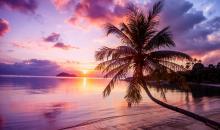 In der Dämmerung: Magischer Sonnenuntergang