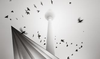 Fotograf des Jahres 2014: Schwarzweiß