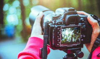Foto-Basics: Schärfe und Focus Peaking